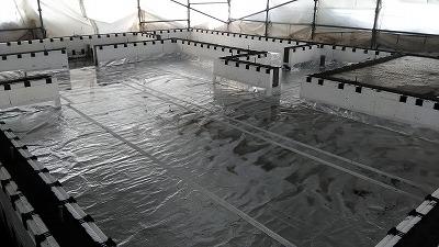アルミシート貼り(旭川近郊の工務店ならミヤザキホーム)