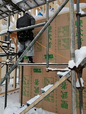 構造用合板張り(旭川近郊の工務店ならミヤザキホーム)